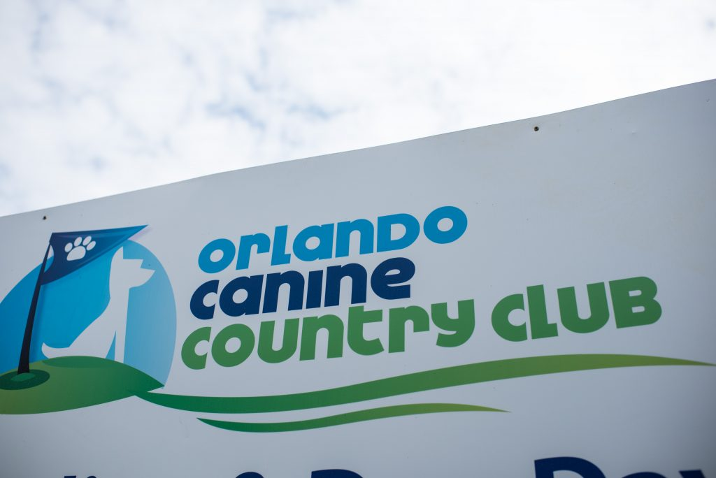 Venue | Carter the Corgi Birthday Party Baseball Theme Orlando Canine Country Club Anna Christine Events Cute